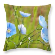 June 6 2010 Throw Pillow