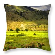 June 7 2010 Throw Pillow