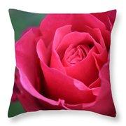 June Rose #8 Throw Pillow