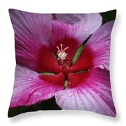 Junes Hibiscus 1 Throw Pillow