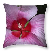 Junes Hibiscus 2 Throw Pillow