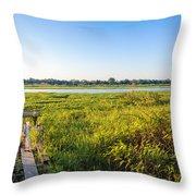 Jungle And Lake Throw Pillow