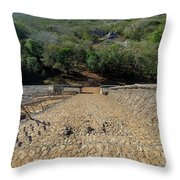 Jungle And Ruins View Throw Pillow