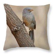 Jungle Babbler Throw Pillow