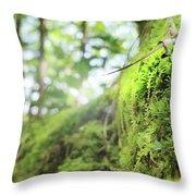 Jungle Gym Throw Pillow