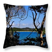 Jungle Portal Throw Pillow