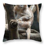 Jungle World Monkey2 Throw Pillow