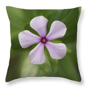 Junglee Flower Throw Pillow