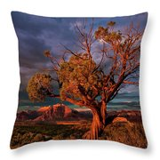 Juniper And Storm Back Of Zion National Park Utah Throw Pillow