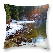 Juniper Bay Throw Pillow