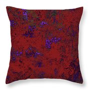 Juniper Berries 1 2 Throw Pillow