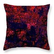Juniper Berries 1 3 Throw Pillow