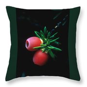 Juniper Berries Throw Pillow