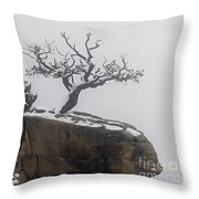 Juniper In Snow-signed-#2572 Throw Pillow