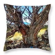 Juniper Monarch Throw Pillow