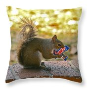 Junk Food Squirrel Throw Pillow