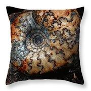 Jurassic Ammonite Throw Pillow