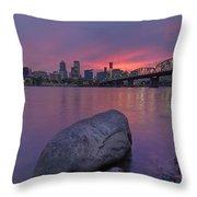 Jurassic Sunset Throw Pillow