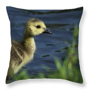 Just A Babe Throw Pillow