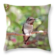 Brief Rest Throw Pillow