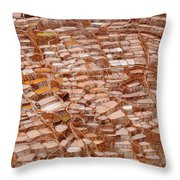 Just A Few Salty Pools Throw Pillow