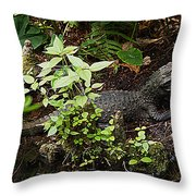 Just A Little Guy Throw Pillow