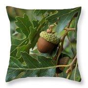 Just A Nut Throw Pillow