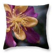 Just A Pretty Flower Throw Pillow