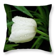 Just A Rainy Day Throw Pillow