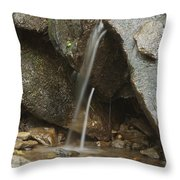 Just A Trickle Throw Pillow