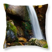Just A Very Small Waterfall II Throw Pillow