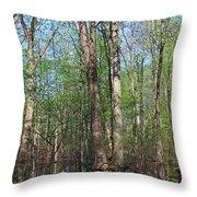 Just A Wanderer Throw Pillow