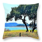 Just A Wonderful Day Throw Pillow