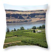 Just Add Water... Throw Pillow