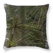 Just After The Rain 2 Throw Pillow