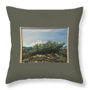 Just Another Windy Day Throw Pillow