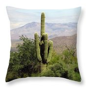 Just Arizona Throw Pillow
