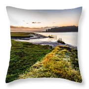 Just As It Came To Be Throw Pillow