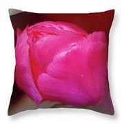 Just Before The Magical Bloom  Throw Pillow