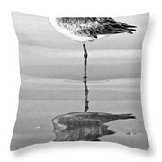 Just Being Coy - Bw Throw Pillow