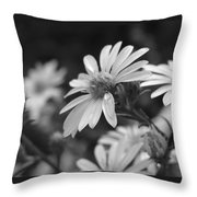 Just Black And White Throw Pillow