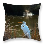 Just Chillin' Throw Pillow