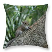 Just Chilling Out Throw Pillow