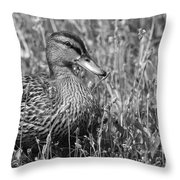 Just Ducky Bw Throw Pillow