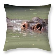 Just For A Breath Throw Pillow