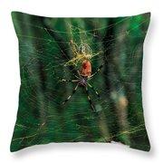 Just Hangin' Around Throw Pillow