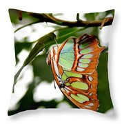 Just Hangin' Throw Pillow