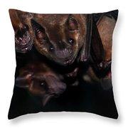 Just Hanging Around - Bats Throw Pillow