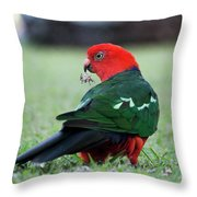 Just Having A Feed 0541 Throw Pillow