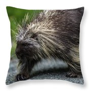 Just Minding My Own Business Throw Pillow